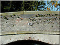 SJ5948 : Starkey's Bridge (detail) near Wrenbury, Cheshire by Roger  Kidd