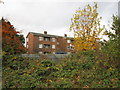 TA1229 : The flats on Westerdale Grove off Southcoates Lane by Ian S