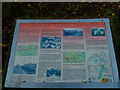 SJ6887 : Information Board - Trans Pennine Trail by Anthony O'Neil