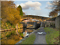 SJ9097 : Bridge and Lock, Fairfield by David Dixon