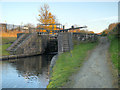 SJ8998 : Lock 15, Ashton Canal by David Dixon