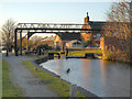 SJ8898 : Ashton Canal Lock 13 (Crabtree Lane) by David Dixon
