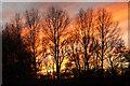 SK7156 : Hockerton Sunset by Richard Croft