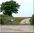 SO4411 : Access lane to Upper Llantrothy Farm by Jaggery