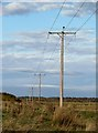 NT3956 : Overhead power lines at Falahill by Walter Baxter