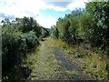 NN5823 : Disused railway track above south Loch Earn by Anthony O'Neil