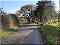 SJ9991 : Sandy Lane, Chisworth by David Dixon