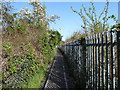 TQ5586 : Path by the railway, Upminster by Robin Webster