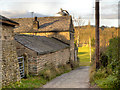 SJ9490 : Hyde Bank Farm by David Dixon