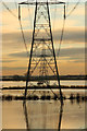 SK8171 : Trent valley pylons by Richard Croft