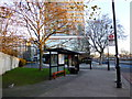 TQ3078 : London Bus Stop and Shelter Millbank London by PAUL FARMER