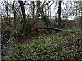 SO6691 : A proper footbridge by Richard Law