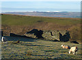 NY6703 : A ruined barn above Bowderdale by Karl and Ali