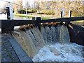 SK5701 : Flooding at Aylestone Mill Lock by Mat Fascione