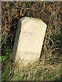 TL1198 : Old Milestone by Keith Evans
