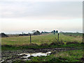 TL8201 : Airstrip, Walton Hall by Robin Webster