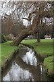 TQ8110 : Stream through Alexandra Park by Oast House Archive