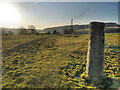 SD7515 : Path towards Turton Bottoms by David Dixon