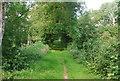 TQ0437 : Wey South Path by N Chadwick