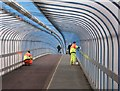 TL4657 : Cleaning the cycle bridge : Week 51