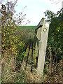 TL6054 : Small Footbridge by Keith Evans
