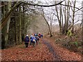 NT2462 : Woodland path at Glencorse : Week 51
