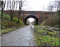 SJ9594 : Christmas Day on the Trans Pennine Trail by Gerald England