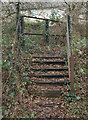 SS9084 : Steps at railway crossing, Brynmenyn by eswales