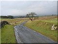 NY8778 : Minor road near Birtley by Oliver Dixon