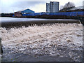SD7909 : River Irwell, Bealey's Weir by David Dixon