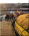 NZ9011 : The steps, Whitby by Derek Harper
