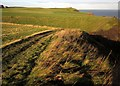 NZ9309 : Cleveland Way near Widdy Field by Derek Harper