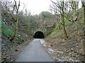 SE2520 : Approach to the eastern portal of the Earlsheaton tunnel by Humphrey Bolton