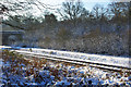 TQ2832 : Brighton Line north of Balcombe Tunnel by Robin Webster