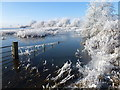 TL5293 : Flooded and frozen - The Ouse Washes near Welney by Richard Humphrey
