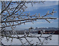 SK4670 : Hoar frost and view to Bolsover by Andrew Hill
