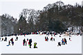TQ2549 : Priory Park in snow : Week 4