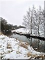 SE4205 : River Dearne Darfield by Steve  Fareham