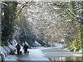 ST2788 : Walking the dogs alongside the canal : Week 4