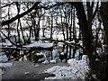 SJ9818 : Bridleway crossing the Sherbrook Valley : Week 5