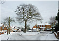 SO9096 : Winter in  Buckingham Road, Penn, Wolverhampton by Roger  Kidd