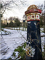 TQ3156 : Coulsdon Common - Boundary Post by Peter Redzimski
