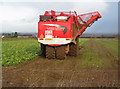 TA0213 : Vervaet Beet Harvester on Elsham Hill : Week 5