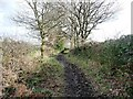SE2706 : Bridleway descending Bentcliff Hill by Christine Johnstone