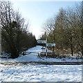 SP9007 : View into Oaken Grove by Rob Farrow
