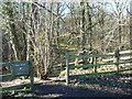 SE2903 : Entrance to Nabs Wood by Christine Johnstone