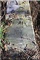 SP5200 : Benchmark on culvert top, Kennington Road by Roger Templeman