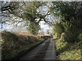 SP0571 : Icknield Street south of Barton Farm by Robin Stott