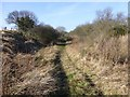 NU2012 : Trackbed of  the old Alnmouth to Alnwick railway line  by Russel Wills