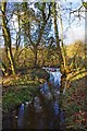 SO8475 : A stream in Spennells Valley Nature Reserve, Kidderminster by P L Chadwick